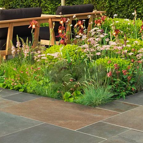 Let's talk garden design!